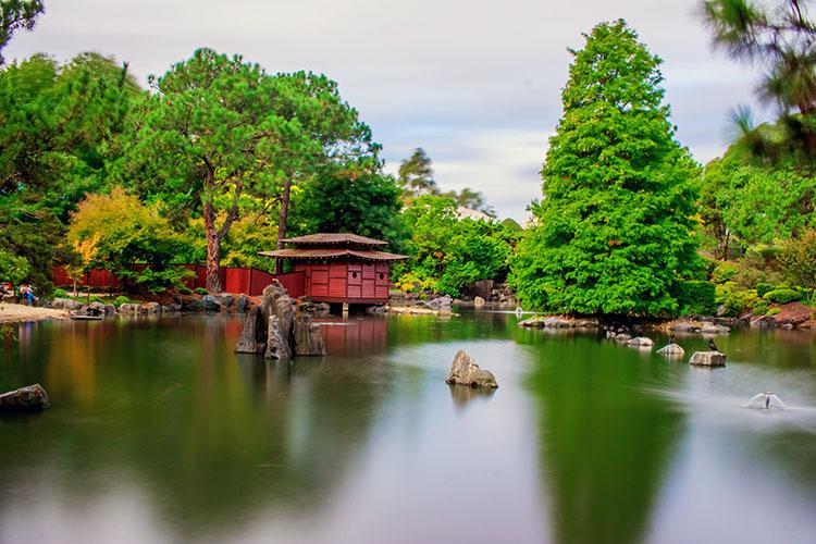 Auburn Botanic Garden Sydney Australia