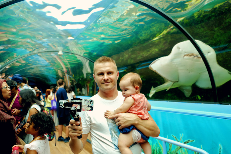 Sea Life Aquarium: things to do with kids in sydney
