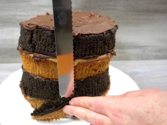 diy checkerboard cake